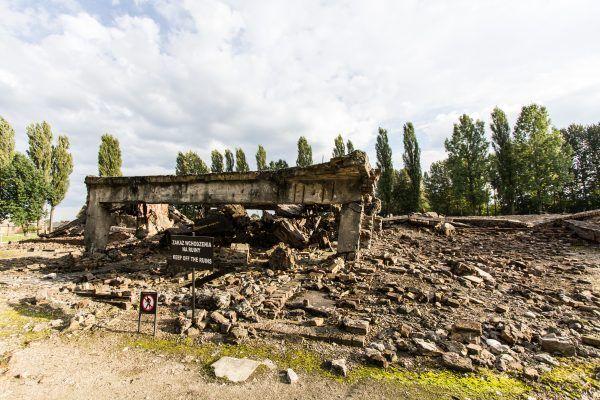Załoga obozu przed jego wyzwoleniem zniszczyła dokumentację i część zabudowań.