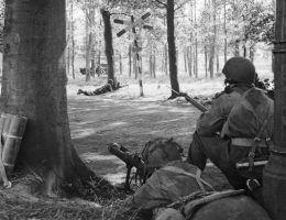 Nie tylko Niemcy faszerowali swoich żołnierzy narkotykami. Alianci wcale nie pozostawali w tyle.
