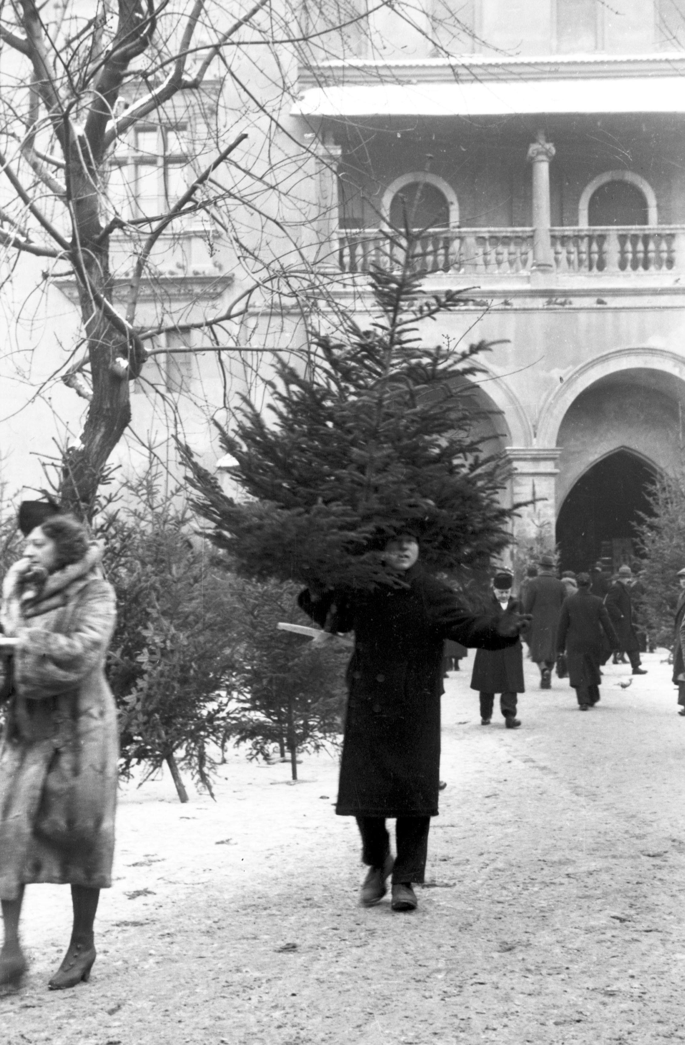 Choinka już kupiona. Zdjęcie z krakowskiego Rynku z roku 1932 (fot. NAC, domena publiczna)
