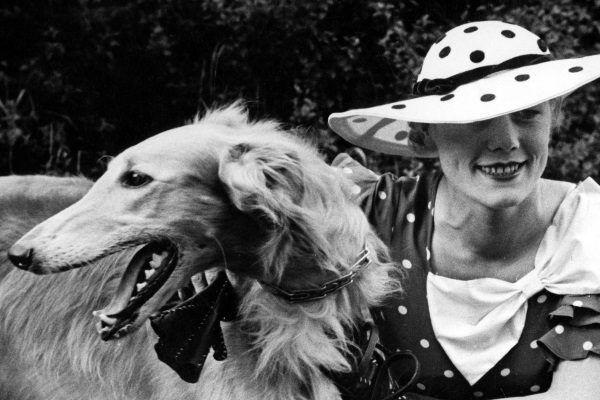 Kobieta z psem rasy chart syberyjski. Fotografia z katowickiej wystawy psów z roku 1935.