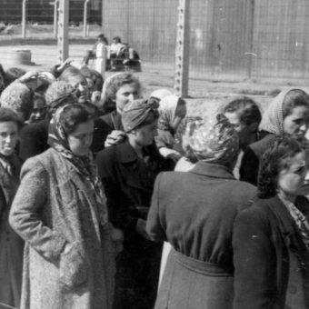 Kobiety przybyłe w jednym z transportów do Auschwitz-Birkenau.