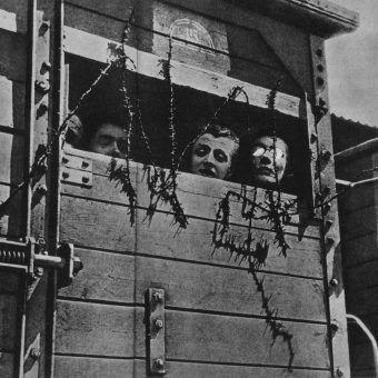 Żydzi, deportowani z całej Europy, do samego końca nie mieli pewności, co ich czeka.