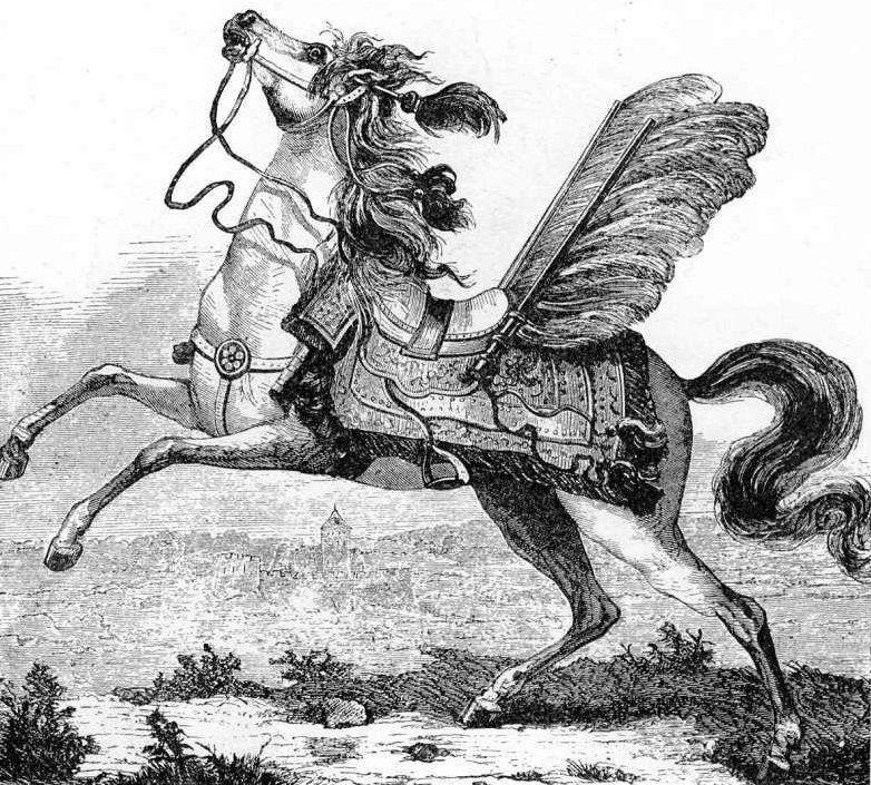 """Wyruszając na wojnę będziesz musiał zabrać ze sobą kilkanaście wierzchowców. Na ilustracji koń husarski z """"Encyklopedii staropolskiej""""."""