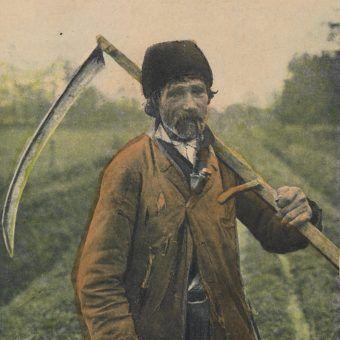 Kosiarz (fot. domena publiczna)