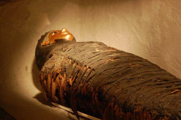 Żadna mumia nie była bezpieczna (fot. Jay Malone, lic. CC BY 2.0)
