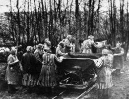 Kobiety były zmuszane do ciężkiej, przekraczającej ich siły pracy.