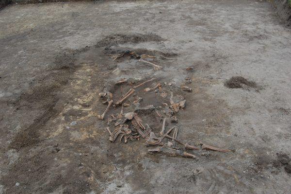 Zbrodnia w Parośli była pierwszym masowym mordem Polaków popełnionym przez Ukraińców na Wołyniu. Po tej masakrze szybko zaczęły się kolejne (na zdj. zbiorowa mogiła ofiar rzezi wołyńskiej w Woli Ostrowieckiej).