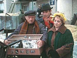 Kadr z serialu Alternatywy 4