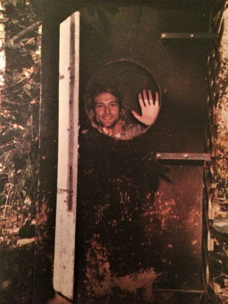Curt Cobain w skrzyni orgonowej