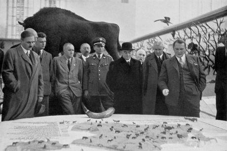 utz Heck (pierwszy z lewej) i Herman Goering (pierwszy z prawej) nad makietą Puszczy Białowieskiej podczas Międzynarodowej Wystawy Łowieckiej w 1937 roku.