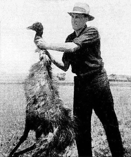 Farmer z odstrzelonym ptakiem emu