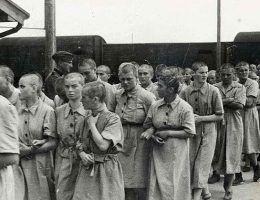 Wspomnienia kobiet, które ocalały są wstrząsające...