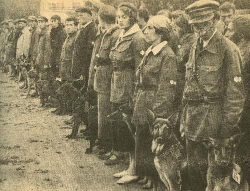Ośrodek szkoleniowy psów przeciwpancernych w obwodzie moskiewskim (1931)