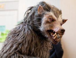 Czy popularne wilkołaki mają rodowód słowiański?
