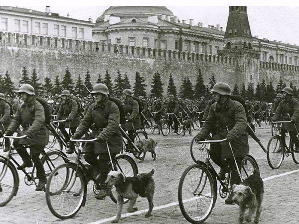 Defilada żołnierzy Armii Czerwonej z psami przeciwpancernymi na placu Czerwonym w Moskwie (1938)