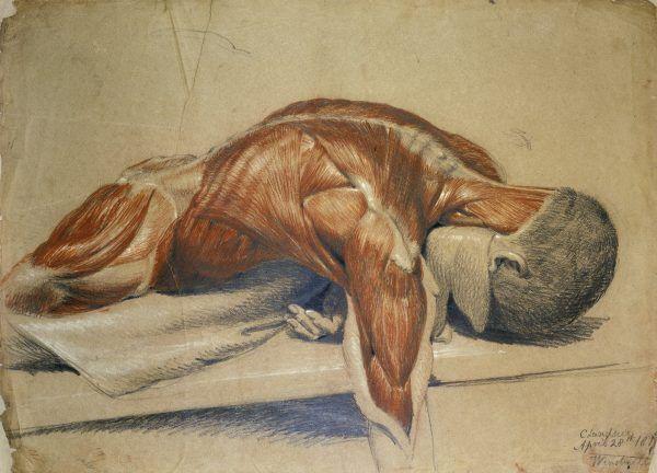 Obraz autorstwa Charlesa Landseera prezentuje człowieka odartego ze skóry