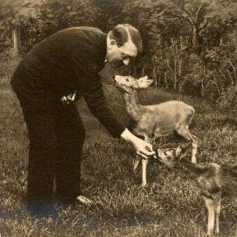 Uważa się, iż jedną z przyczyn ograniczenia jedzenia mięsa przez Hitlera była miłość do zwierząt