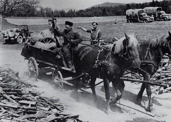 Kozacy składają broń przed Brytyjczykami