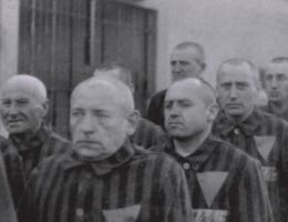 Jaki los spotkał europejskich homoseksualistów w czasie II wojny światowej?