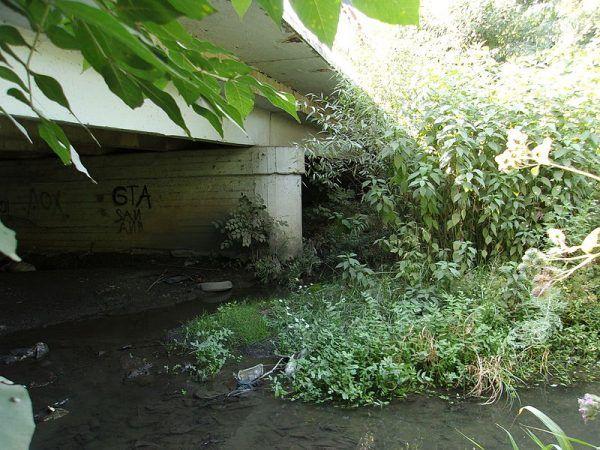 Most Gruszewski, gdzie znaleziono ciało Eleny Zakotnowej