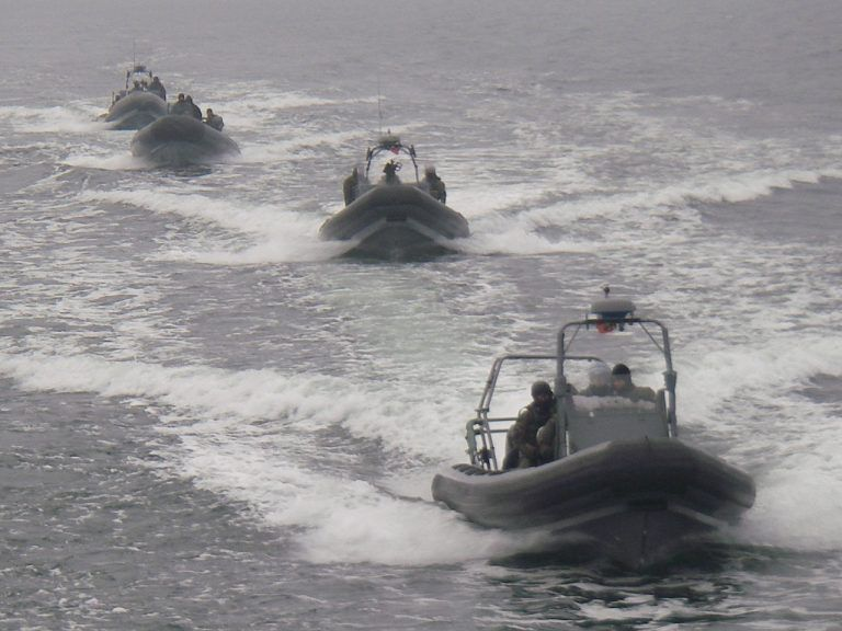W misjach w Zatoce Perskiej, Chris Kyle współpracował z polską jednostką GROM