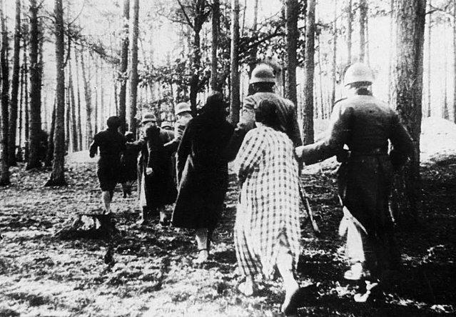 20 czerwca 1940 roku w Palmirach rozstrzelano trzystu pięćdziesięciu ośmiu przedstawicieli polskich elit.