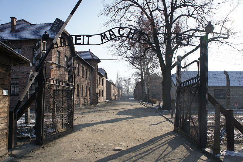 Szacuje się, że łącznie w Auschwitz stoczył ok. 40 (według innych źródeł nawet 60) walk. Przegrał tylko raz.