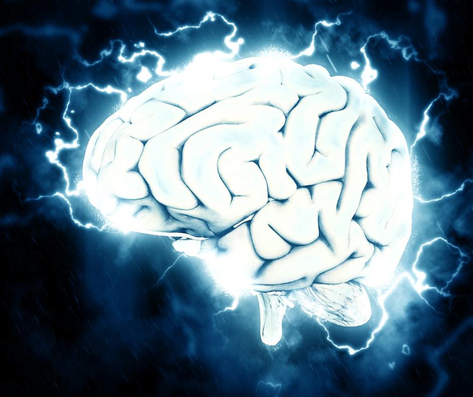 Cztery miliardy lat. Tyle czasu trzeba było, by wyewoluował myślący i czujący ludzki mózg