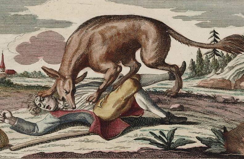 W XVIII wieku tajemnicze stworzenie siało postrach w małej prowincji Gévaudan na południu Francji.