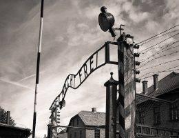 Po wojnie Mimi pomogła stworzyć Muzeum Auschwitz-Birkenau.