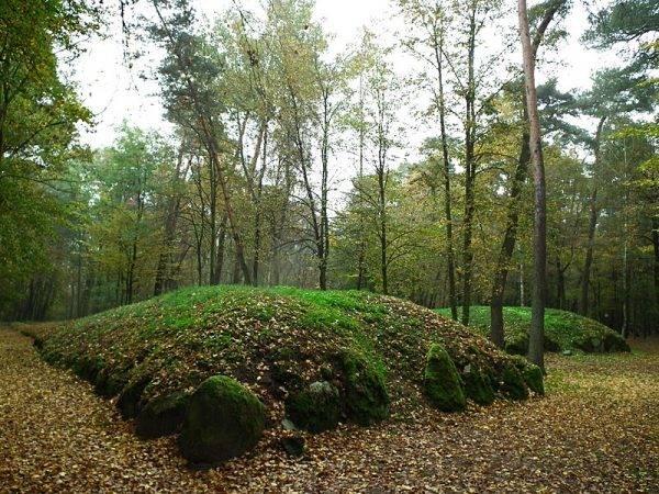 Grobowce megalityczne w Wietrzychowicach.