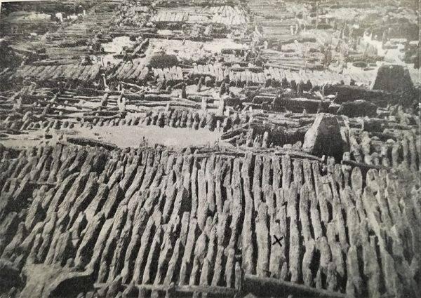 Widok od wschodu na wykopaliska w Biskupinie w latach 30.