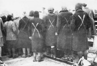 Harcerki udzielały pomocy współosadzonym w obozie (na zdj. kobiety z Ravensbrück po wyzwoleniu).