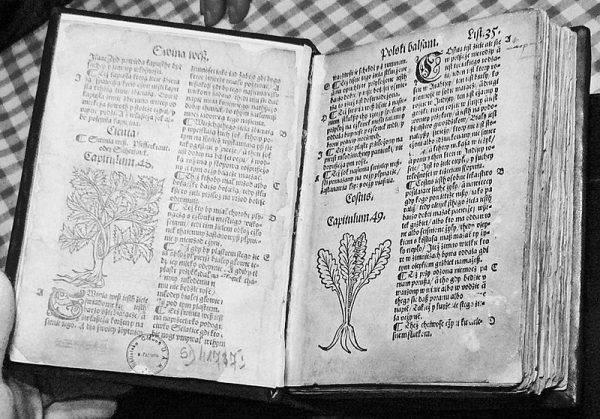 """Dzieło """"O ziołach i mocy ich"""" Stefana Falimirza, w którym po raz pierwszy odnotowano słowo wódka w znaczeniu destylatu"""
