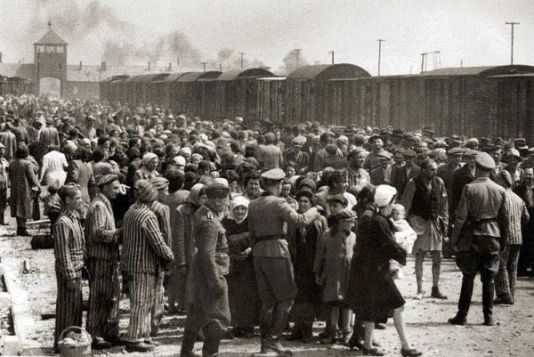 Selekcja węgierskich Żydów w Auschwitz.