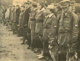 Sowiecka szkoła tresury psów