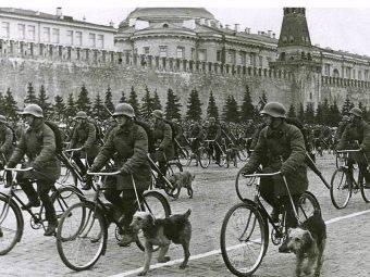 Psy były i są ważnym elementem armii. Nie inaczej było w Związku Radzieckim (zdj. poglądowe)