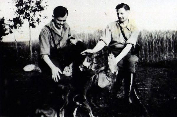 W 1945 roku pomimo rozwiązania Armii Krajowej w ukryciu pozostało kilkadziesiąt tysięcy żołnierzy.
