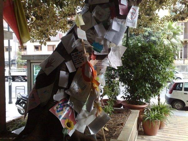 Drzewo pamięci Giovanniego Falcone
