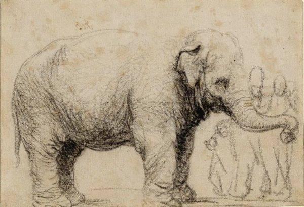 Hasken prócz tego, że odwiedzała kolejne europejskie państwa, stała się inspiracją dla artystów. Portretowali ją m.in. Rembrandt, Stefano della Bella i Herman Saftleven Młodszy.