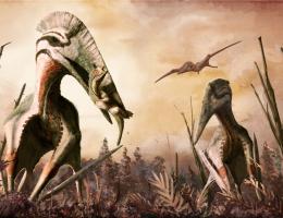 Czy pterozaury przetrwały do naszych czasów?