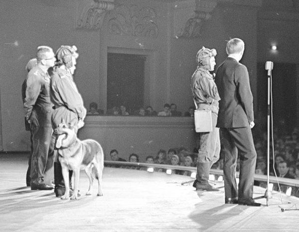 Ze wspomnień Feryńca zanotowanych przez Korczyńskiego wynika, że pies nie został przywieziony do Polski z krańców Związku Radzieckiego. Do załogi dołączył wiosną 1944 roku w Kiwiercach na Ukrainie. Co ciekawe, Szarik był… kradziony.